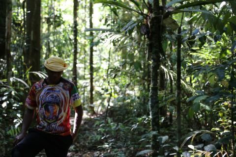 Man standing among jungle trees in Amazon
