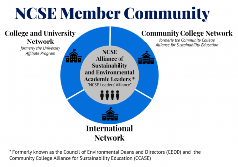 Diagram showing NCSE Member Networks