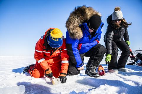 Rob Rember and Mette Kaufman, both with UAFs International Arctic Research Center, train graduate student Rachel Lekanoff how to sample sea ice during a training trip to Utqiaġvik, Alaska prior to the MOSAiC expedition