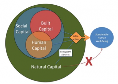 Sustainable human well being is a product of built, human, and social capital, as well as natural capital.