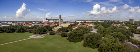 View of LSU Campus