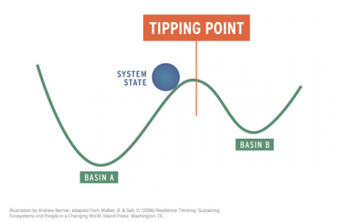 Line graph displaying two low points and a ball representing the system state at the peak between them, at what is known as a tipping point.