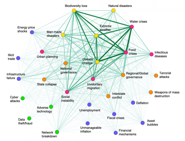 Graphic showing the network of potentially synergistic risks with the potential to lead to a global systemic crisis